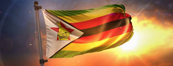 Moti doubles Zimbabwe Investments As Economy Seen Opening Up